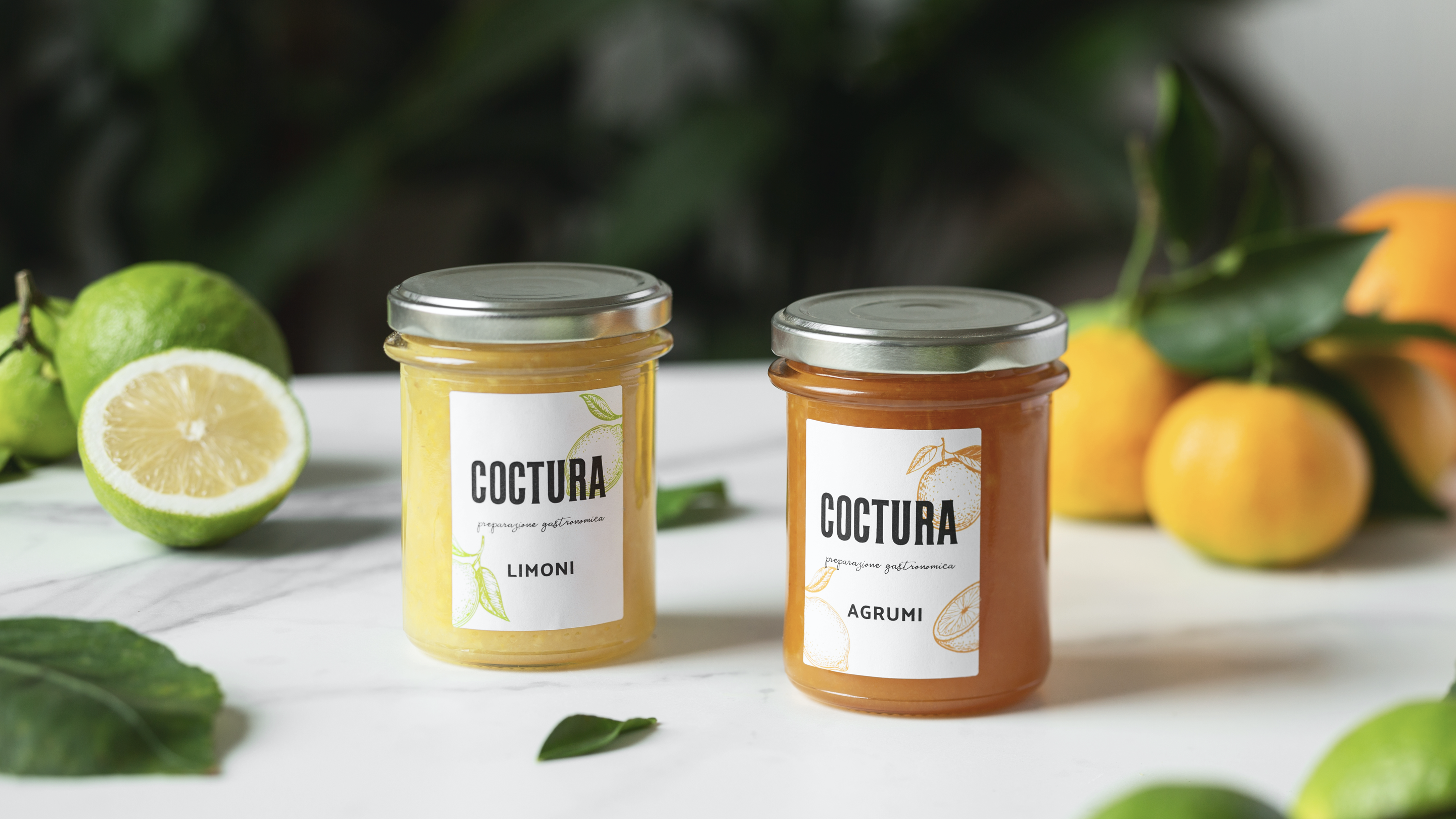 business-plan-coctura-crowdfunding